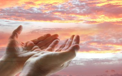 Free Will and God's Goodness Part 2